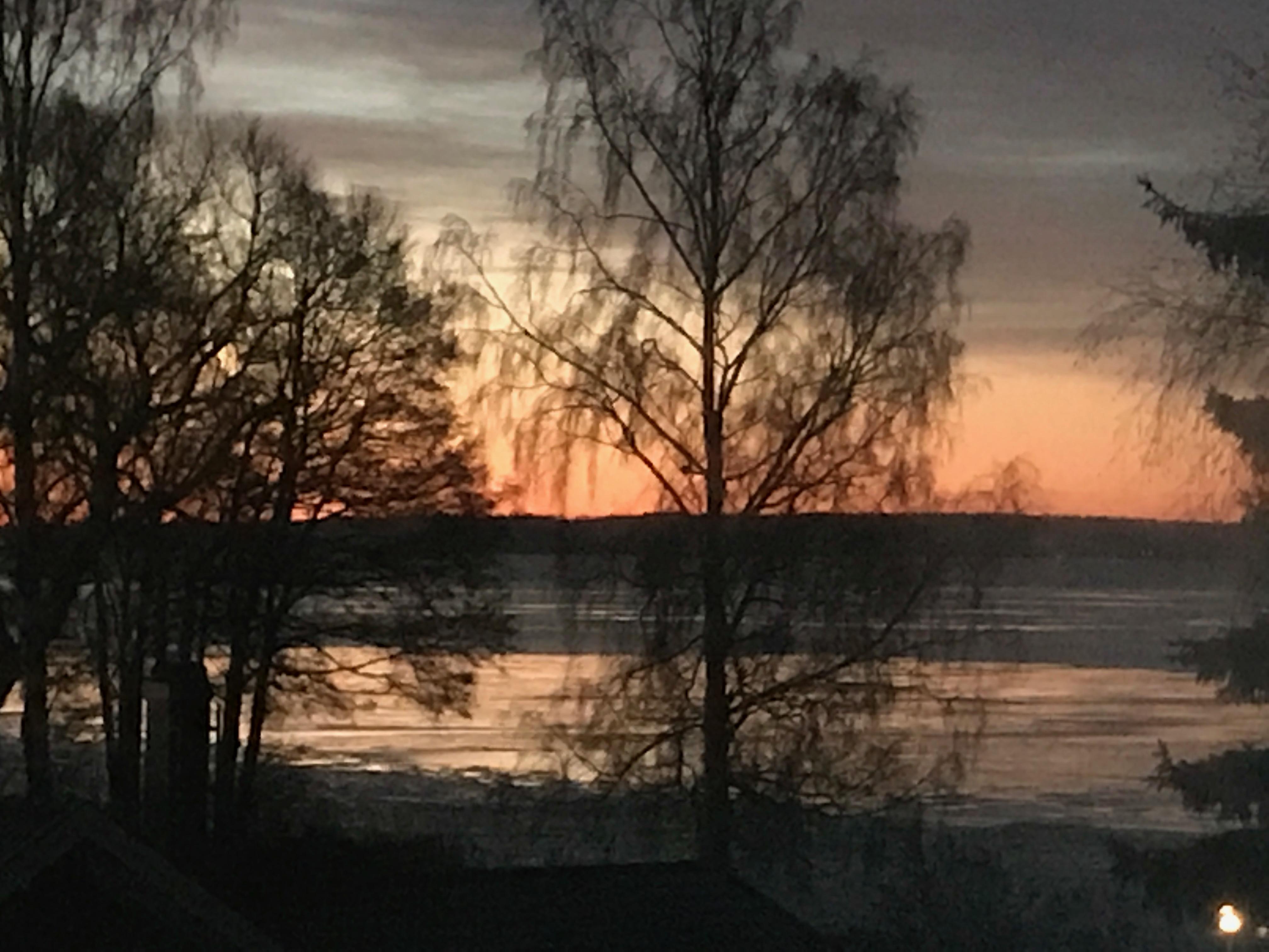 Soluppgång över en sjö, med nyis i strandkanten